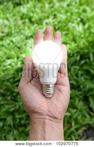 Led Bulb - Energy In Our Hand With Lighting