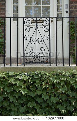 Decorative railing, ivy and door