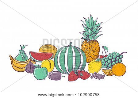 Variety of fresh fruits isolated on white background, vector illustration