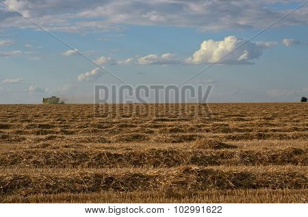 Harvest Season.