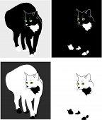 image of siluet  - 4 varietions of cat - JPG