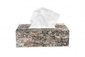 foto of tissue box  - Image of bark in tissue paper box form for tree to paper concept - JPG