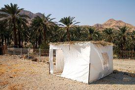 picture of sukkoth  - Sukkot in Israel - JPG