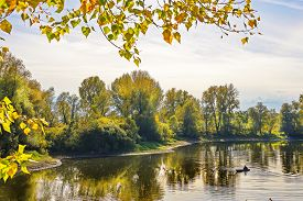 stock photo of novosibirsk  - Rustic fisherman sails on the boat on the fall river - JPG