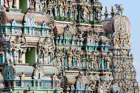 picture of meenakshi  - Meenakshi Sundareswarar Temple in Madurai - JPG