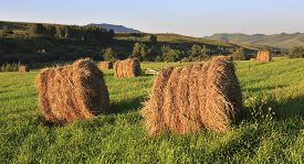 stock photo of haystacks  - Haystacks on the green lawn in the mountains - JPG
