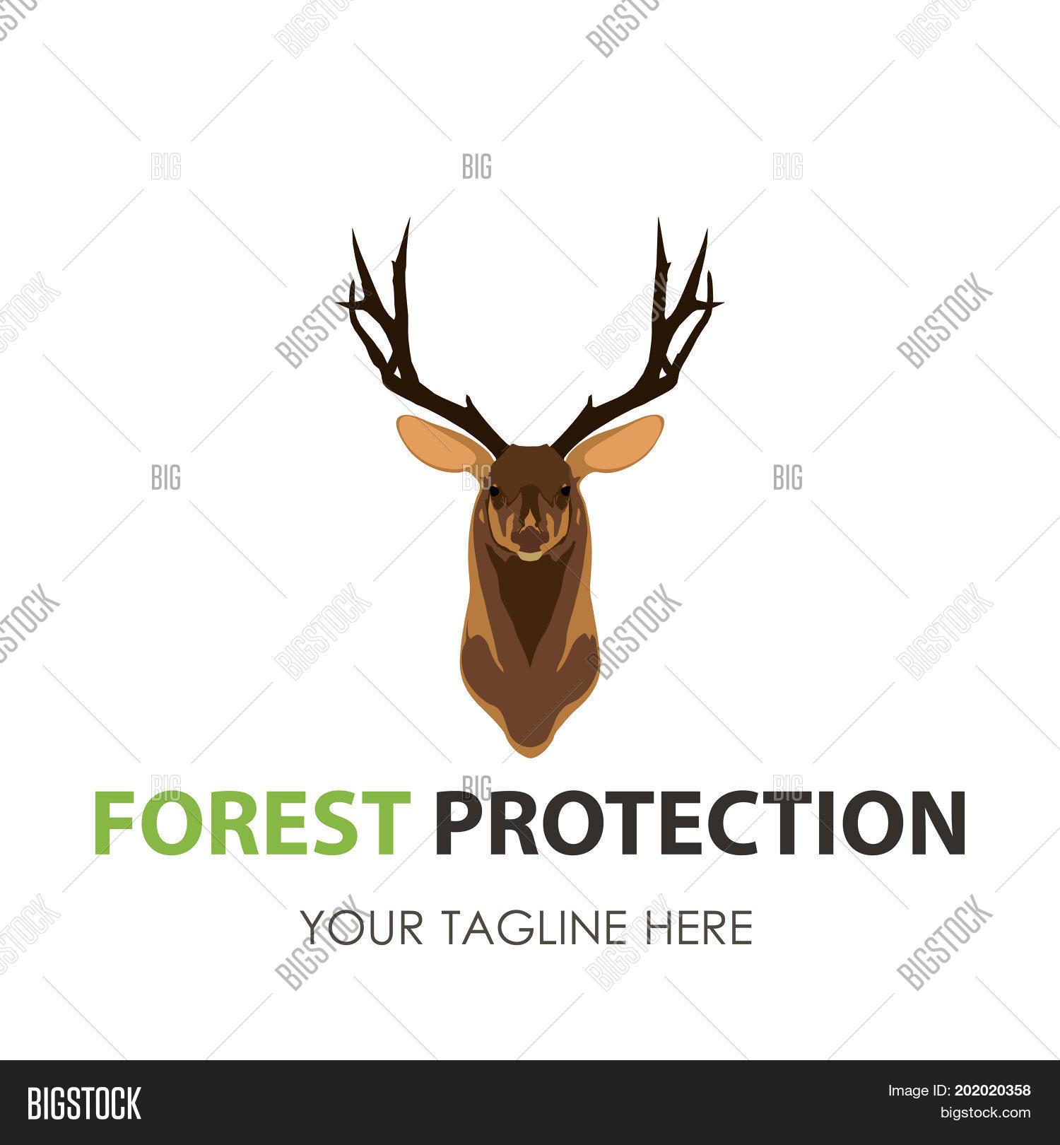 stag Logo Design  BrandCrowd