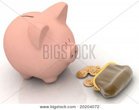 piggy banks look at a purse with chinks