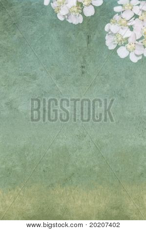 lovely background image with interesting texture, floral elements and plenty of space for text