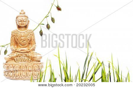 buddha and flora against white background