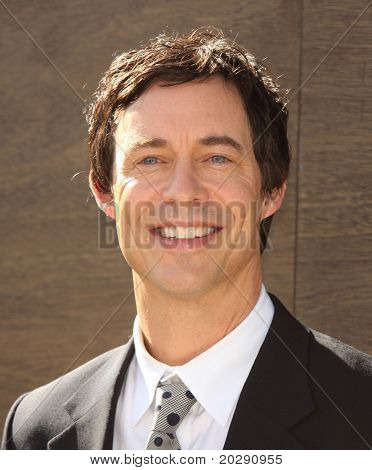 LOS ANGELES - DEC 11:  Tom Cavanagh arrives to the 'Yogi Bear' Los Angeles Premiere  on December 11, 2010 in Westwood, CA