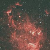 The North America Nebula In The Constellation Cygnus poster