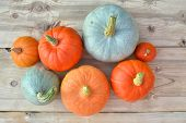 Orange And Blue Pumpkins poster