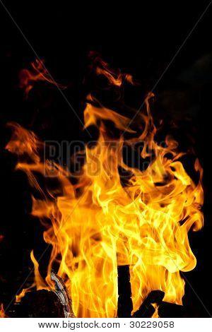 Flames - Burning campfire