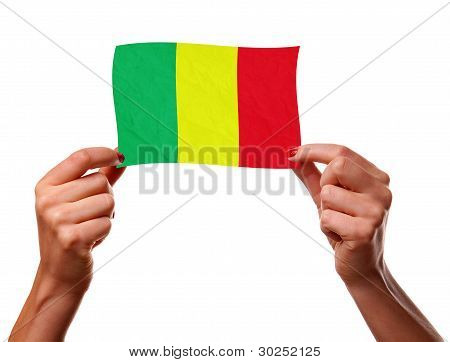 The Malian flag