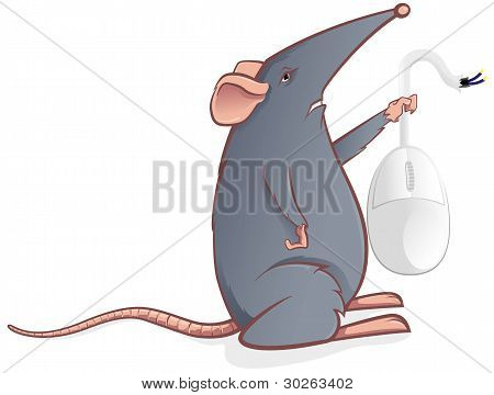 Grey mouse with a computer mouse