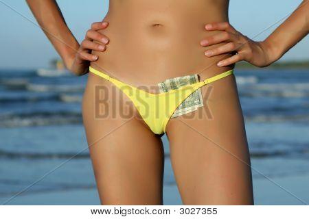 Dollars In Bikinis