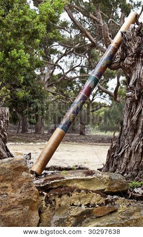 Single Didgeridoo