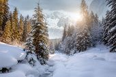 Majestic Mountain Winter Landscape. Breathtaking Alpine Highlands In Sunny Day. Impressively Beautif poster