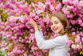 Bright And Vibrant. Pink Is My Favorite. Little Girl Enjoy Spring. Kid On Pink Flowers Of Sakura Tre poster