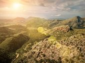 Beautiful birdeye view on forest in mountains at sunny day. Palme de Mallorca island. Travell, jorne poster
