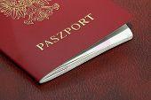 Polish Passport poster