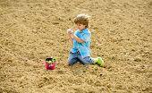 Little Boy Planting Flower In Field. Fun Time At Farm. Happy Childhood Concept. Little Helper In Gar poster