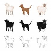 Vector Illustration Of Breeding And Kitchen  Icon. Collection Of Breeding And Organic  Vector Icon F poster