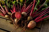 stock photo of root-crops  - Fresh organic beets just picked from the garden shot on a wood table - JPG
