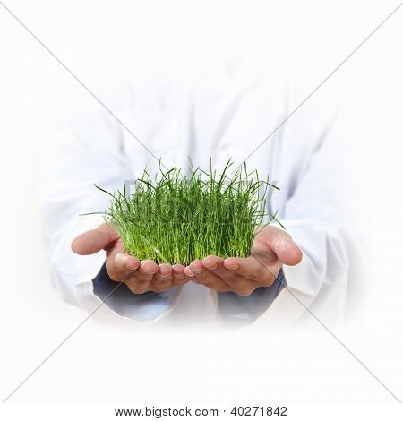 Hands holding a plant growing out of the ground, on white background close-up