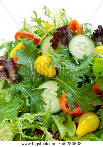 Fresh Salad Greens