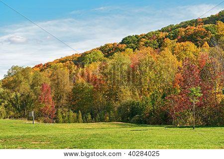 Fall In Glen Eden Conservation Area  Milton, Ontario