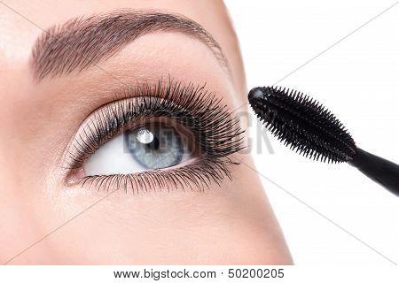 Beauty Female Eye With Long False Eyelashes