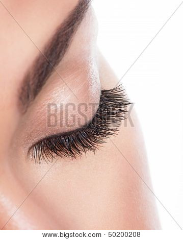 Long Curly Eyelashes