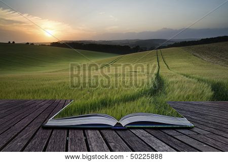 Creative Concept Pages Of Book Summer Landscape Image Of Wheat Field At Sunset With Beautiful Light