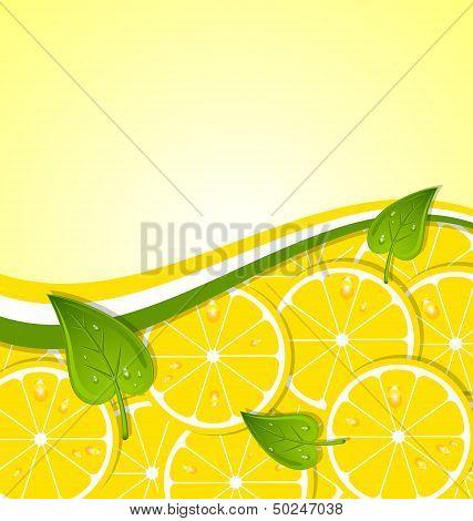 Lemon Slices Template