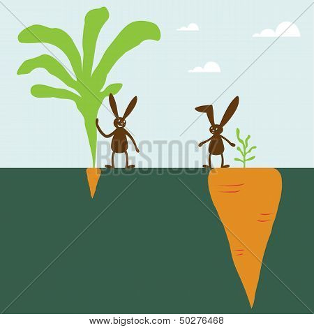Rabbit And Carrot