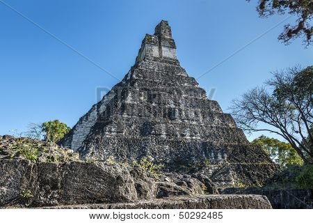 The Mayan Ruins Of Tikal In Guatemala