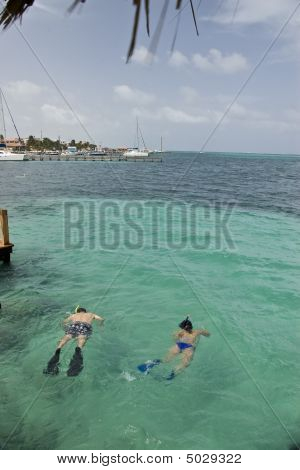Snorkling At Ramon`s