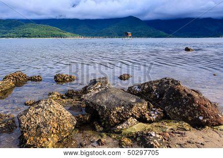 Rock on pond