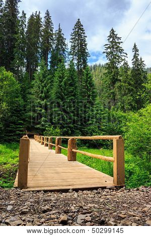 New Bridge From Road To Forest. Vertical