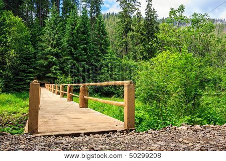 New Bridge From Road To Forest. Horizontal