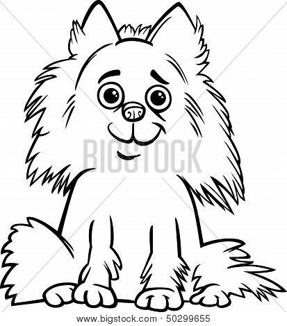 Pomeranian Dog Cartoon For Coloring Book