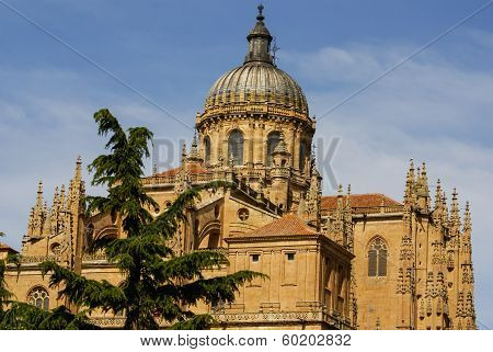 One Of The Towers Of The New Cathedral Of Salamanca, Spain, Unesco World Heritage