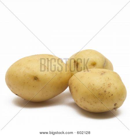 patato 01