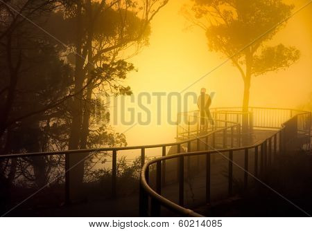 A misty Lookout in Southern Australia