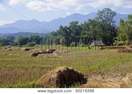 Field And Hut On A Background Of Mountains