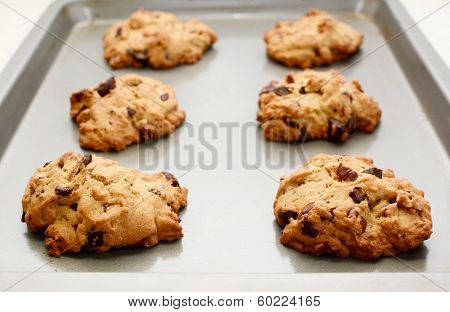 Six Cookies Fresh From The Oven