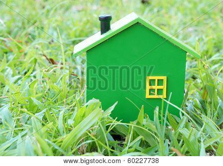 Little green house on green grass
