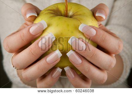Beautiful Female Hands